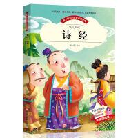 爱不释手的成长必读经典 诗经 彩图注音版小学生1-3年级无障碍阅读 世界中外经典