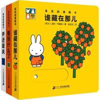 米菲的滑板书系列 谁藏在那儿+看到什么了+开还是关 全3册 0-2-3-4-5-6岁儿童绘本 婴儿宝宝启蒙认知玩具书洞