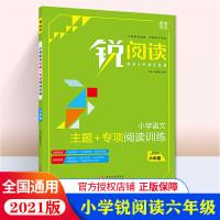 2020版 锐阅读小学语文阅读训练100篇 六年级 配送教师用书答案册 小学6年级语文阅读训练100篇