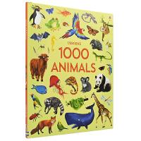 Usborne 1000 Animals 1000种动物 动物世界 儿童百科科普图书 4~10岁 英文原版图书进口