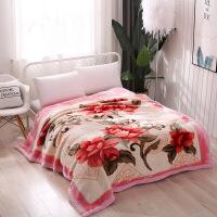 进口品质毛毯加厚冬季双层盖毯婚庆12斤毯被子单人学生保暖绒被拉舍尔毛毯W【】