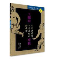 王树田专辑:八卦连环掌、八卦龙形剑、对擒拿