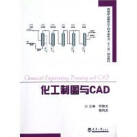 化工制图与CAD(高等职业教育化工技术类专业十二五规划教材)
