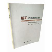铜矿资源战略分析 周平等 地质出版社