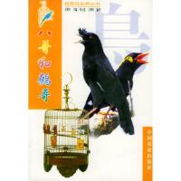 【收藏品旧书】八哥和鹩哥 王增年 ,莫玉忠 王增年著中国农业出版社 9787109061088