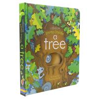 Usborne Peep Inside A Tree 一棵树 偷偷看里面系列 儿童英语版翻翻书 英语启蒙绘本洞洞书纸板