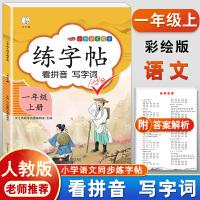练字帖一年级上册 人教版小学生语文看拼音写词语字帖