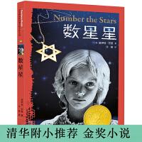 数星星――国际大奖小说系列,纽伯瑞金奖少年小说!