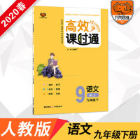 2020版 万象思维 高效课时通九年级语文 下册RJ人教版 根据新课程标准教材编写
