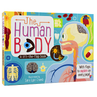 The Human Body 人体 儿童科普百科 英语翻翻纸板书 3~8岁幼儿学习 儿童英文原版图书进口