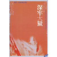 【二手旧书9成新】 深牢大狱――海岩长篇经典全集 海岩 文化艺术出版社 9787503924958