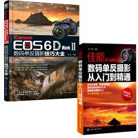 Canon EOS 6D Mark Ⅱ数码单反摄影技巧大全+无师自通 从零开始学摄影  佳能6D2单反相机摄影视频从入门到精通使用说明书教程书籍
