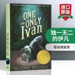 华研原版 独一无二的伊凡 英文原版儿童文学小说书籍 The One and Only Ivan 全英文版正版进口英语书