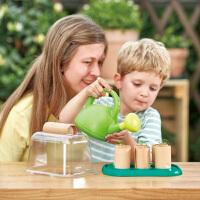 Hape小小园丁种植温室4-6岁儿童运动户外玩具 下单送种子
