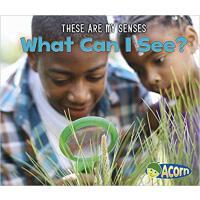 【预订】What Can I See? 9781484604311