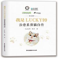 我是Lucky99――治愈系萌猫自传