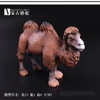 沙漠单双峰骆驼幼崽蒙古骆驼模型儿童仿真实心玩具野生动物模型