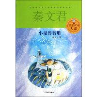 【二手旧书9成新】小鬼鲁智胜-秦文君 少年儿童出版社-9787532494750