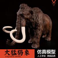 史前生物 猛犸象 长毛象3-12周岁男孩礼物儿童仿真动物玩具模型