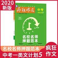 天星教育2020疯狂作文・中考一类文计划5 名校名师押题范本初中复习资料备考阅读模板作文范本