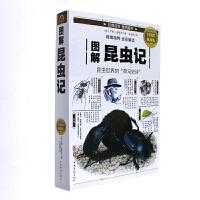 图解昆虫记-全彩图解典藏版( 货号:751136526)