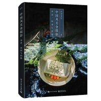 中国风美食摄影布景构图与拍摄 美食摄影书籍 拍摄构思道具布光技巧调光线设置食物创意摆盘摄影技法大全