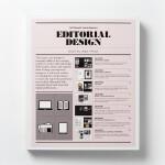 英文原版 排版编辑设计:电子书与纸质书 Editorial Design