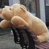 大号皱皮狗 趴趴狗 瞌睡狗 毛绒玩具狗 娃娃 卡通抱枕