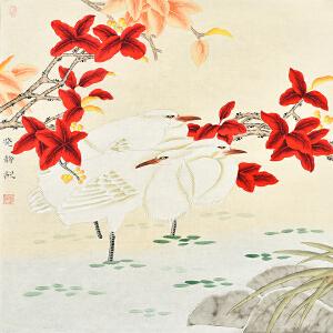 中国书画研究会会员 唐晓静66 X 66CM花鸟画 gh02773
