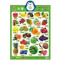 阳光宝贝 新版有声挂图:水果,阳光宝贝品牌制作中心,湖南少年儿童出版社,9787556200405