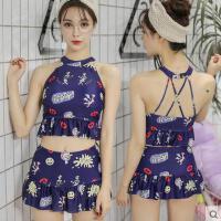 女泳衣 户外新款韩版时尚性感钢托小胸聚拢分体裙式两件套修身显瘦泳装