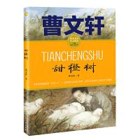 甜橙树 曹文轩小说课本名家美文精选 小学生课外阅读推荐