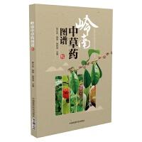 岭南中草药图谱