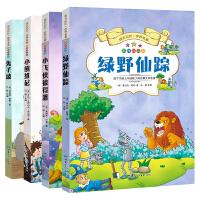 成长记忆・世界名著・绿野仙踪、小飞侠彼得潘、小熊维尼、兔子坡(套装共4册)无障碍阅读彩图注音版