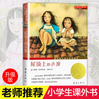 屋顶上的小孩国际大奖小说三四五六年级中小学生课外小说文学阅读读物 9-12-15岁青少年少儿童故事图书籍新蕾出版社正版