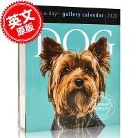 现货 2020年日历 关于狗的主题日历 一天一页 英文原版 Dog Page-A-Day Gallery Calendar 2020