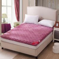 法莱绒床垫加厚立体珊瑚绒床垫子 单双人床垫被 榻榻米双人床褥子
