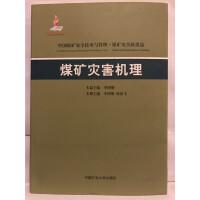煤矿灾害机理(中国煤矿安全技术与管理?煤矿灾害救援篇)