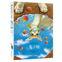 兔子坡 国际大奖儿童文学 (美绘典藏版)经典童话故事书 小学生课外阅读物适合8-9-10-12-15周岁少儿童书籍畅销