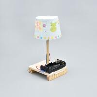 物理科学实验玩具创意台灯科技制作小发明儿童手工diy拼装