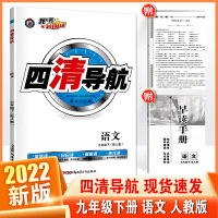 2020春版 四清导航 9/九年级下册 语文 RJ人教版