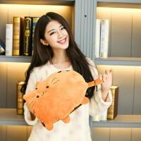 【好货优选】红鹏 暖手袋可充电暖手宝防爆电热水袋小猫猫安全自动断电热宝 尾巴猫