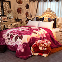 拉舍尔毛毯被子双层加厚冬季双人毯子 单人学生宿舍保暖珊瑚绒毯 200x230cm 约10斤