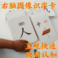 直映认字有图无图象形识字卡片汉生字卡 0-3-6幼儿童认字大卡早教11