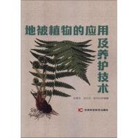 地被植物的应用及养护技术 杨青菊,张红英,靳凤玲 9787557857721睿智启图书