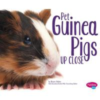 【预订】Pet Guinea Pigs Up Close