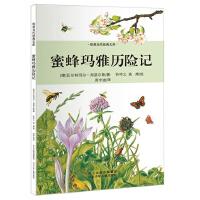 欧美当代经典文库第一辑――蜜蜂玛雅历险记