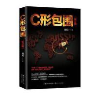 C形包围:内忧外患下的中国突围(新版)