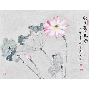 【有合影】当代花鸟画家 朱老师  54 X 43CM 《映日华光动》 HN12790