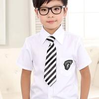 儿童领带男童领结女童领花演出配饰纯色条纹格子学生校服领带